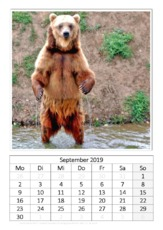 September_Kamtschatkabär.pdf